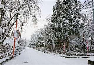 冬の荒町集落。右側の木の茂る場所が実家敷地=今年元旦