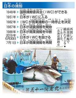 日本の捕鯨