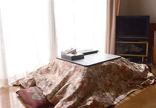 暖かな光が注ぐ居間のこたつ。女性のお気に入りの場所だ