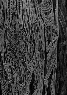 第2句集「みどりの繃帯」。表紙は日本画家の義弟・舘岡豊照の「脈」