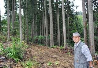 作業道の一例。山(左)側にやや傾き、谷(右)側のり面に杉を残し土留めにしている