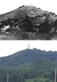 1960年以前の森山(上、県文化財保護室提供)と、現在の森山(下、五城目町教育委員会提供)。かつては草地が広がっていたが、現在は麓の大半がスギの植林地となっている=写真はいずれも天然記念物の指定地外
