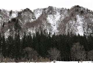 打当集落に近い猟場の斜面。急な尾根を登り下りする