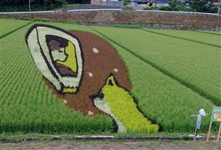 内陸線の車窓から撮影した上桧木内駅前の田んぼアート=昨年8月中旬
