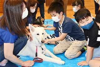 動物と触れ合い、命の大切さを学ぶ児童=16日、由利本荘市の西目小学校