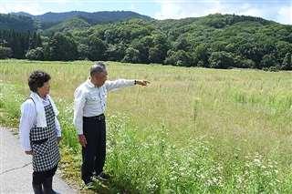 雑草で覆われた田んぼの前に立つ村上さん夫婦=8月24日