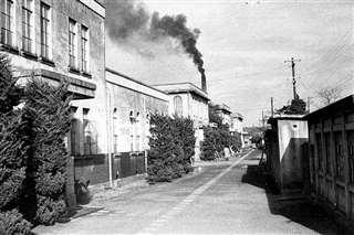 昭和30年代前半ごろとみられる医学部構内(東北大学史料館提供)